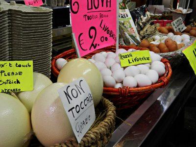 Banchi di uova al Mercato di Livorno.