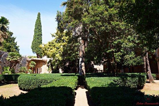 giardini del monastero benedettino dell'isola di lokrum.