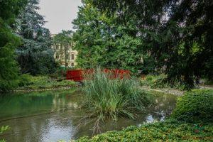 Cosa vedere a Zagabria: l'orto botanico.