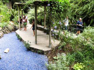 Cosa vedere a Ischia: Giardini La Mortella, Ischia.