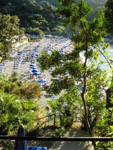 Cosa vedere a Ischia: il Parco Termale Negombo.