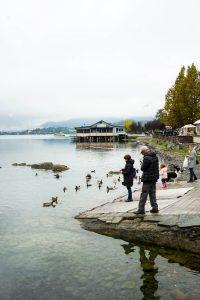 Cosa fare sul lago di viverone: percorrere la passeggiata.