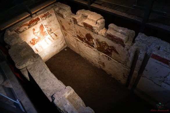 Tomba dei Cavalieri, Museo Civico.