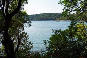 scorcio del mare di bella vraka tra la vegetazione.