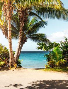 Spiaggia con palme a Porto Rico.