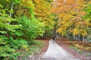 dove andare in vacanza in autunno: canfaito