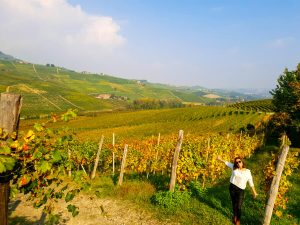 dove andare in vacanza in autunno: langhe