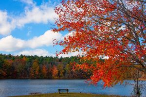 new england in autunno
