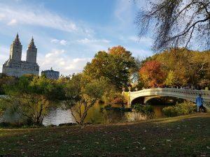 dove andare in vacanza in autunno: new york