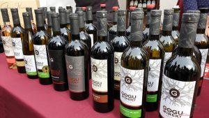 cantine in moldavia: gogu winery