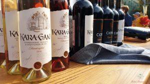 vino moldavo di kara gani