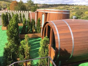 camere a forma di botte a purcari winery