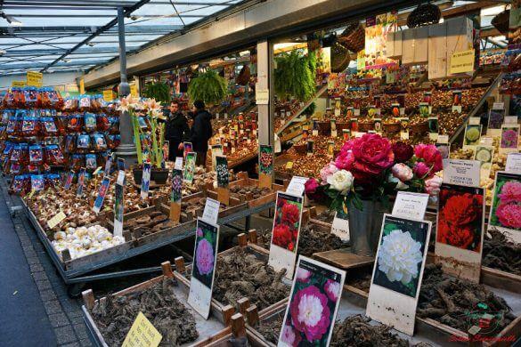 Bloemenmarkt, il mercato dei fiori di Amsterdam