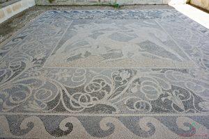 mosaico del sito archeologico di pella