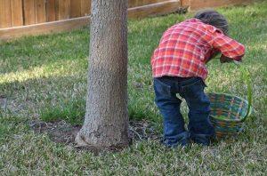 bambino che cerca le uova