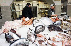 la pescheria gallina nel quartiere porta palazzo di torino