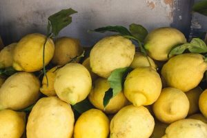 il tour del limone è una delle escursioni giornaliere da sorrento da fare