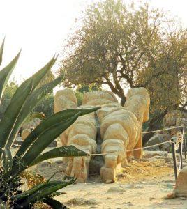 telamone del tempio di zeus