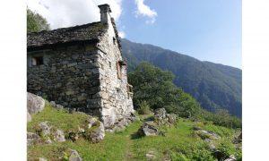 casa nella natura a crodo, piemonte, perfetto per le vacanze nel bosco