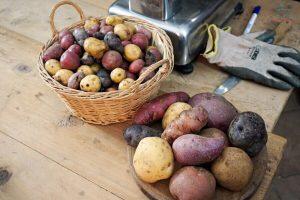 patate hapfla frutt