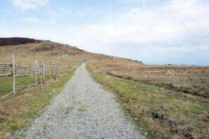 inizio sentiero alta via dei monti presso pratorotondo, ottima area picnic a genova e dintorni