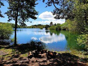 lago di giacopiane, uno dei più bei laghi in liguria da visitare