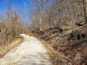 sentiero nel parco dell'adelasia, uno dei più bei parchi della liguria