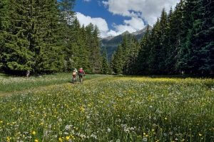 valle d'aosta mountain bike