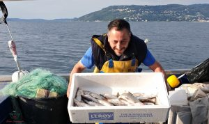 i pesci del lago maggiore appena pescati